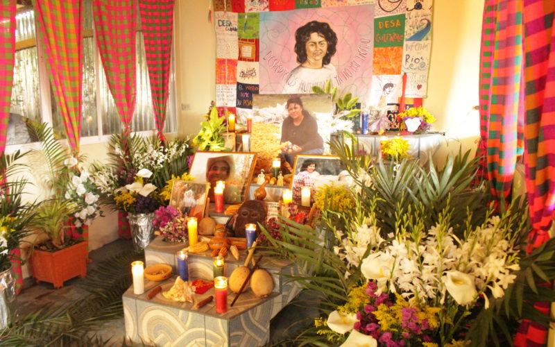 A 4 años de su siembra: Berta sigue siendo infinita